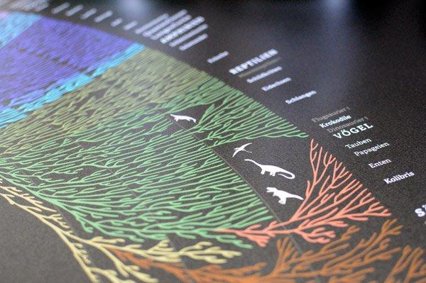 Stammbaum der Lebewesen Detail